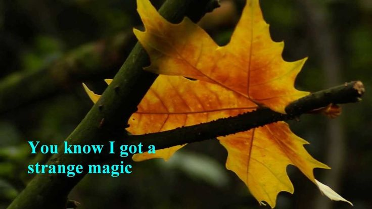 Electric Light Orchestra - Strange Magic [w/lyrics]