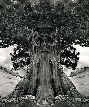 Jerry Uelsmann-'Tree Goddess'-Telluride Gallery of Fine Art