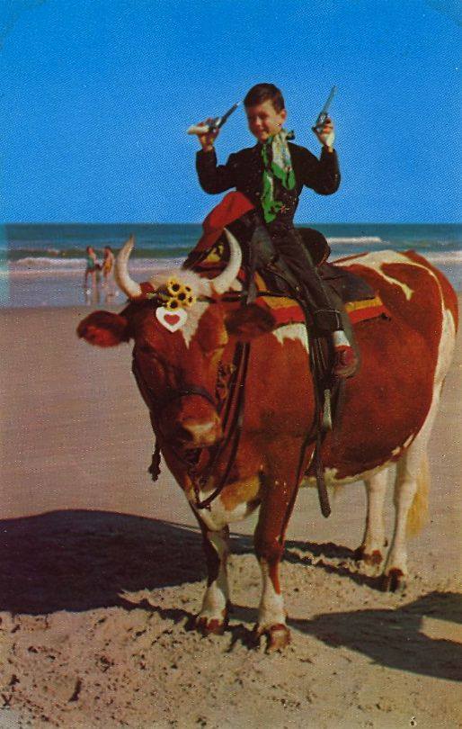 """FERDINAND THE BULL  """"  """"FERDINAND THE BULL"""" has become an institution on the """"World's Most Famous Beach,"""" Daytona Beach, Florida. Youngsters and oldsters alike assume this post for a picture.  """""""