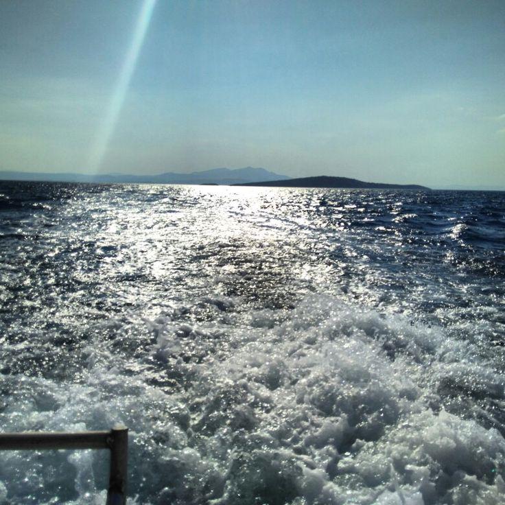Ayvalık dalış okulu - ida dalış merkezi #scuba #scubadiving #diving #underwater #dalisnoktam #ayvalikscuba #ayvalikdalis #idadalismerkezi www.idadiving.com