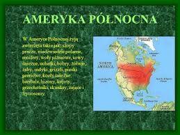 Ameryka północna - Informacje o zwierzętach