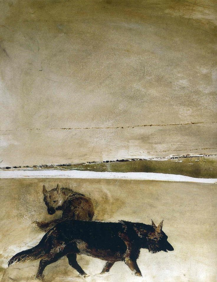 Andrew Wyeth: Tattoo Ideas, Wolf Tattoo, Andrewwyeth, Andrew Wyeth Watercolor, Artists Influenc, Black Dogs, Artists Aesthetics, Wyeth Paintings, Andrew Wyeth Art