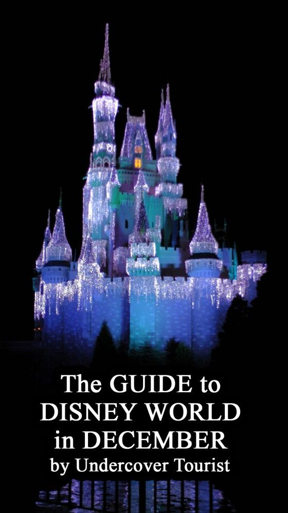 Disney World planning guide December