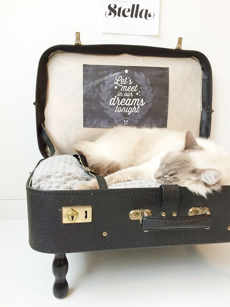 Catbed made of vintage suitcase. see how I did it on my blogg - www.designparken.com