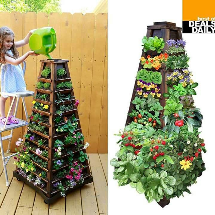 32 best palram greenhouses images on pinterest for Canadian gardening tips