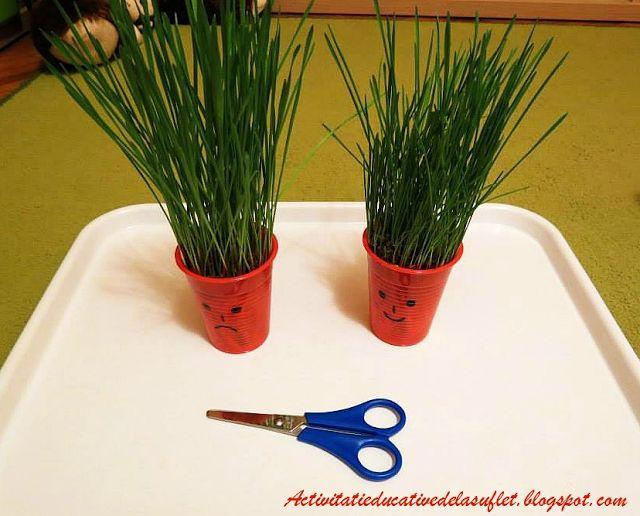 Activitati de gradinarit impreuna cu copiii....in casa... (Primavara semanam, plantam) - 2 ani si 7 luni