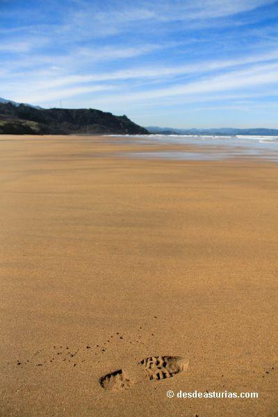 La Playa de Vega
