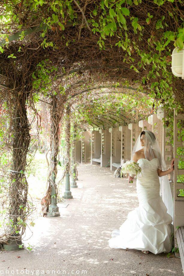 Atlanta Wedding Photographers.Atlanta Botanical Gardens Wedding Photographer Brides Atlanta
