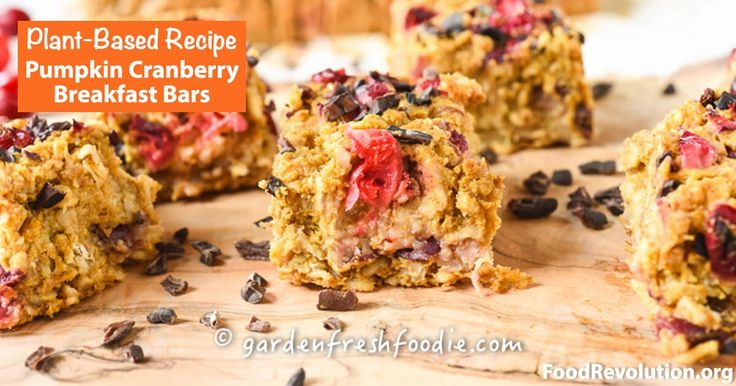 Plant-Based Recipe for Pumpkin Cranberry Breakfast Bars