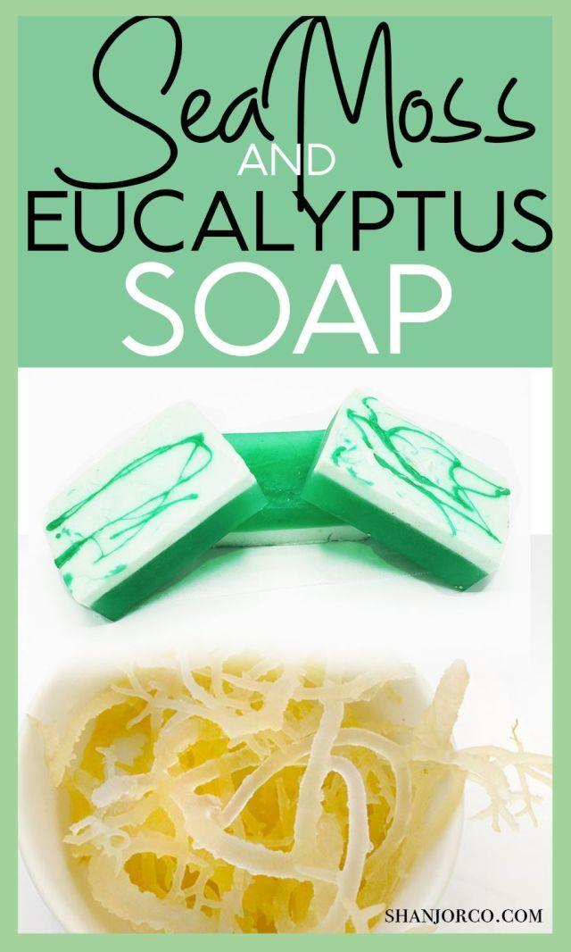 Seamoss And Eucalyptus Soap Sea Moss Turmeric Soap Soap