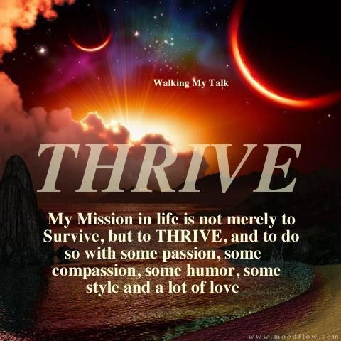 The Hawk – Survive To Thrive Broadcast – Friday 9/26/2014