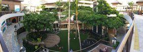 Inside Waikiki's International Market Place, a new fancy shopping center | HAWAII Magazine