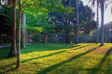 Mount Emily Park