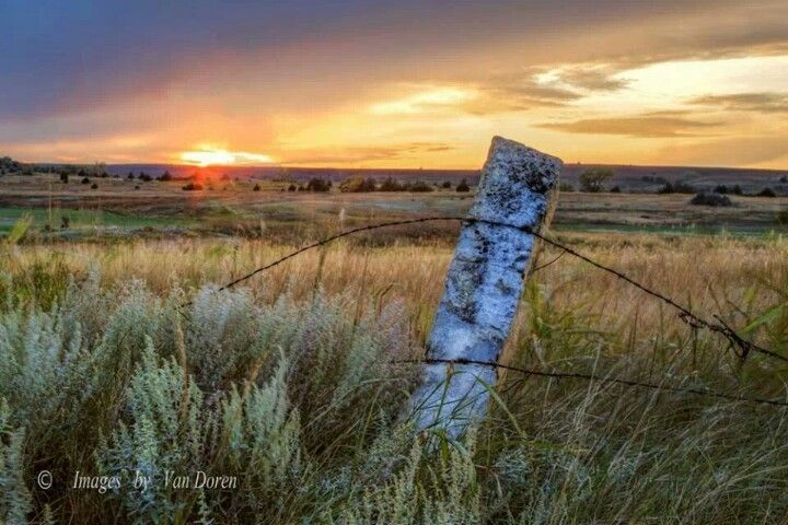 Limestone Fence Post Kansas Pinterest