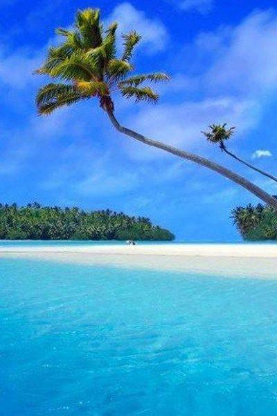 ハプナビーチ                                                       …