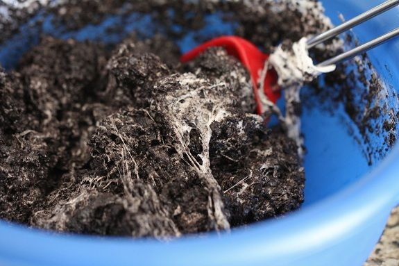 """Oreo's and marshmallows = lumps of coal treats.  Similar to Rice Krispie treats, but instead of putting them in a pan, form them in uneven balls to make """"coal"""" for Christmas!"""