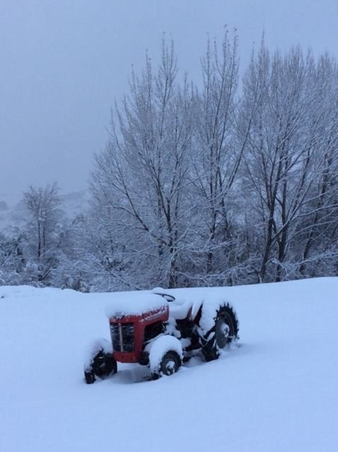 Amisfield #nzwine snowy tractor #WhiteWinter