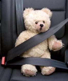 Knuffels moeten ook in de gordels voor de autoverzekering....
