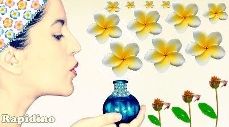 Flor Frangipani: Perfume da Primavera  Beleza natural, vida nova, perfume da primavera, são os significados da flor tropical Pluméria, Jasmim-Manga ou Frangipani, que é utilizada para confeccionar os colares típicos do Havaí e também deliciosos perfumes. Esta maravilha nasce em árvore de mesmo nome. #FlorFrangipani #Perfume #Primavera #Pluméria #JasmimManga #Essência https://rapidino.blogspot.com.br/2016/08/flor-frangipani-perfume-da-primavera.html
