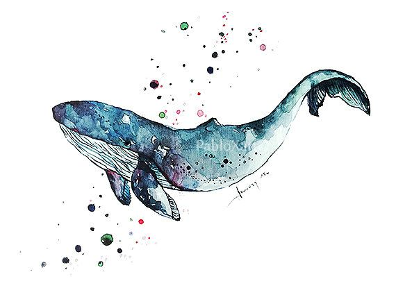 Art Print Watercolor Blue Whale Home Decor Ocean Art by PabloXart