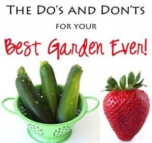 Easy Gardening Tips from TheFrugalGirls.com