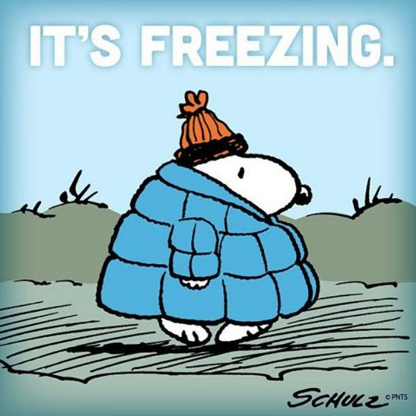 IT'S FREEZING, HERE IN INDIANA, ON JANUARY 11th, 2016, TEMPERATURE OF 7° ABOVE ZERO , WITH WINDCHILL FACTOR IT FEELS LIKE 10° BELOW ZERO!!!!! IT'S FREEZING.. .Brrr.. BABY ITS COLD OUTSIDE!!!!