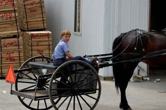 "Amish boy with two-wheeled horse cart, ""Der Karrichgaul"""