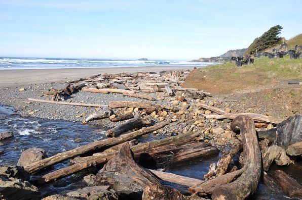 Where To Find Oregon Agates Plus Tips For Finding Them Oregon Beaches Oregon Camping Oregon State Parks