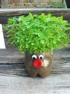 Green hair planter recycled plastic bottles