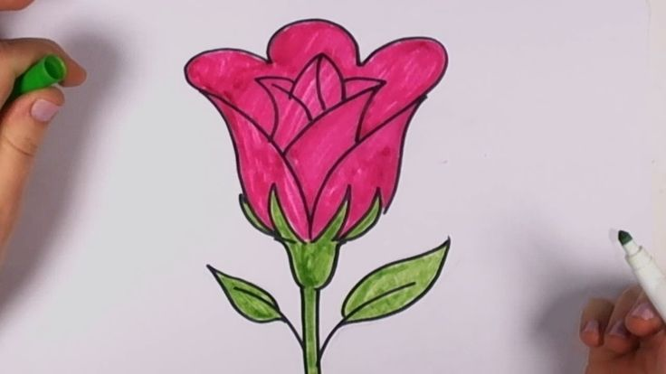 How to Draw a Rose Easy - Open Rose Art Tutorial CC