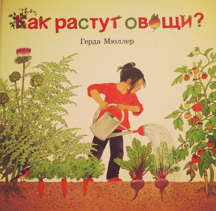 """Герда Мюллер """"Как растут  овощи""""  книга,  подробно рассказывающая ребёнку  о всех хитростях растениеводства,  видах овощей,  работах  в огороде и урожае"""