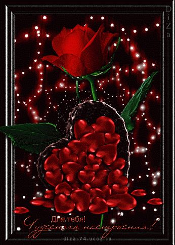 Bildergebnis für Gifs Rosen rot gifs