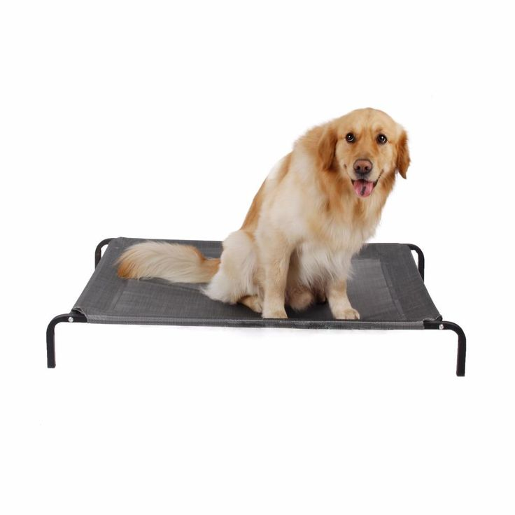 Outdoor Elevated Dog Bed