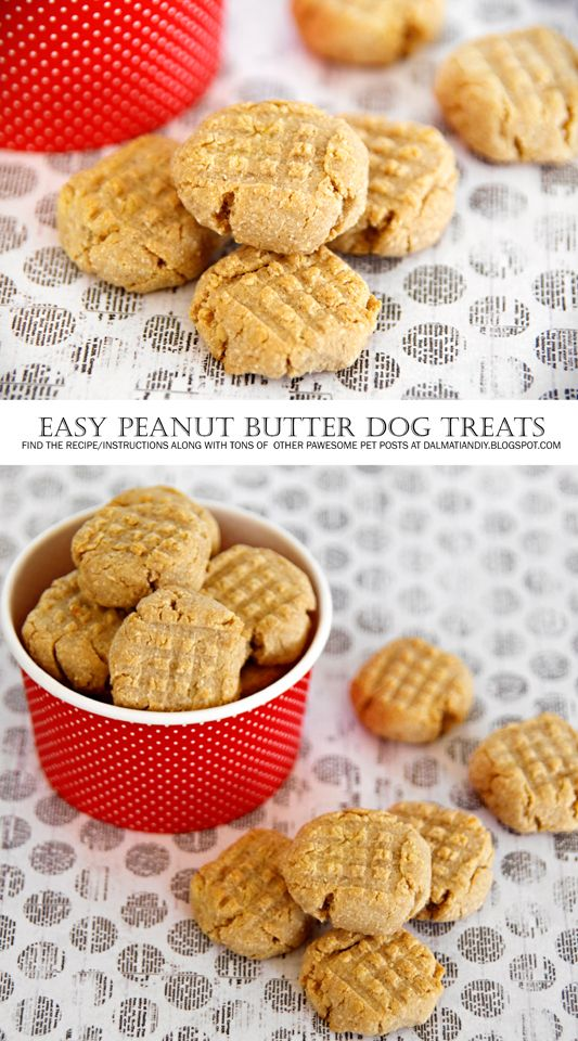 DIY Dog Treats | {RECIPE} Easy Peanut Butter Dog Biscuits