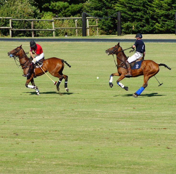 La #Baule - Coupe BRISTON au Brittany Polo Club lors du Derby Polo Tentes d'or de la Baule 2013