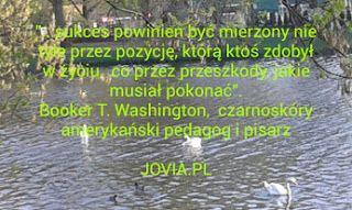 Jovia: Sukces