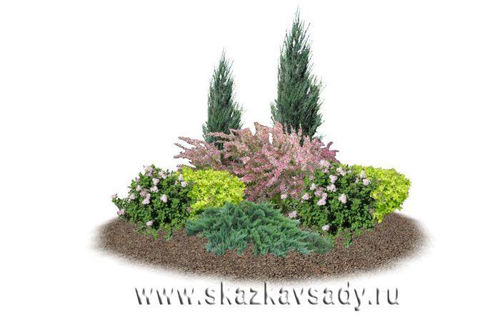 Клумбы с хвойными.Ландшафтная студия Сказка в саду. Ландшафтный дизайн в Ставрополе