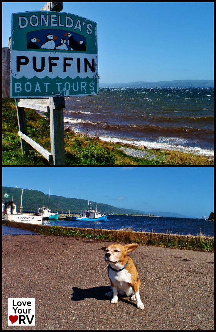 No Puffin tour today - stormy day Cape Breton, New Brunswick - #LoveYourRV