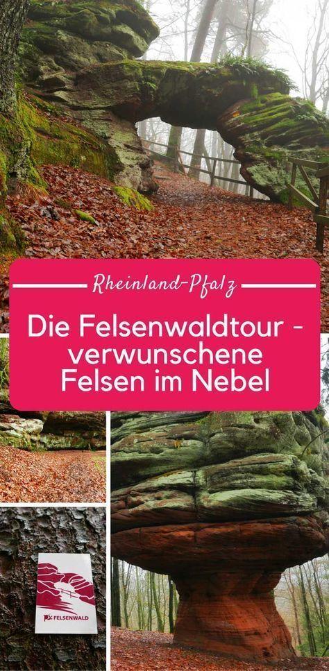 Felsenwaldtour in der Pfalz: Felsen im Nebel bei Pirmasens