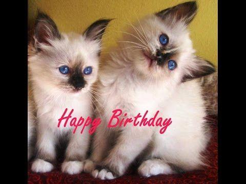 Happy Birthday - Buon compleanno - Joyeux anniversaire (Piano cover) - YouTube