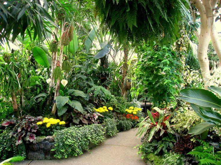 Les 382 meilleures images du tableau d co de jardin sur for Jardin en espagnol