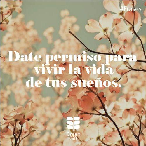 Date permiso para vivir la vida de tus sueños! #Frases