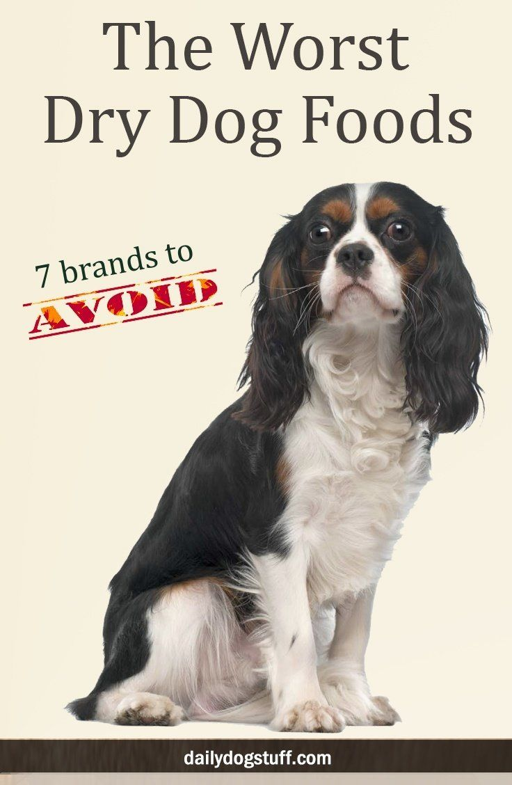 The Worst Dry Dog Foods 7 Brands To Avoid Make Dog Food Dry