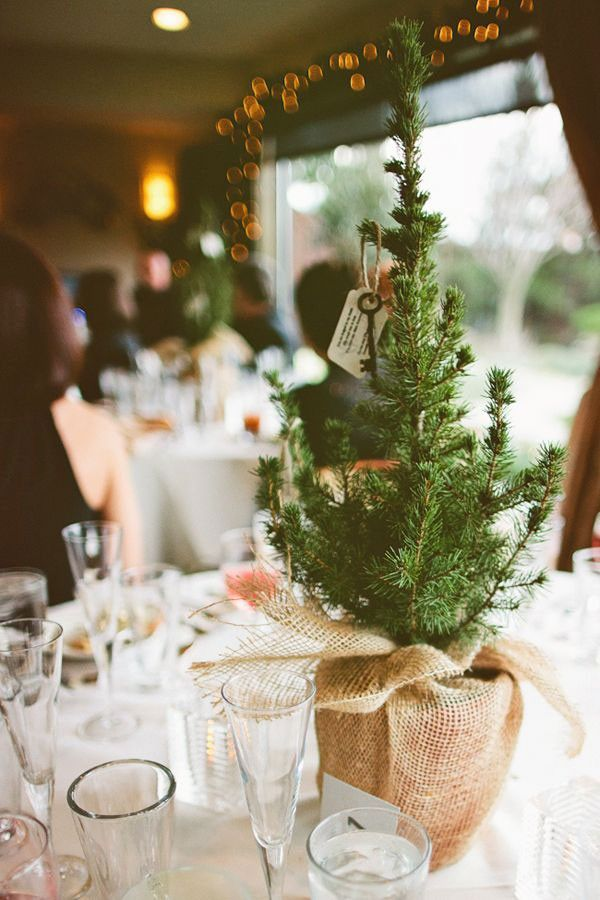 Use small pine trees as simple, rustic centerpieces (above) wrapped in heavy burlap. Make sure treasured guests (such as grandparents and the parents of your besties) take them home after the reception. | See more seasonal symbols for winter weddings here: http://www.mywedding.com/articles/winter-wedding-ideas-pick-a-seasonal-symbol/