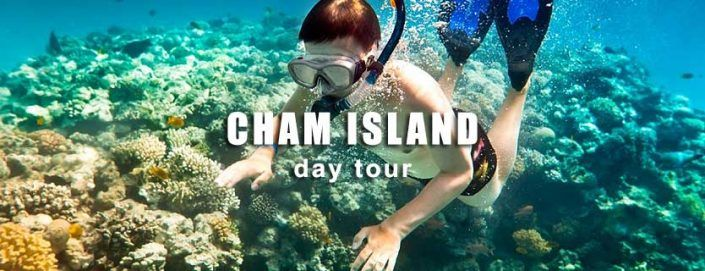 Hai Phong Danang Tour: Cham island day tour