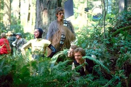 Return of the Jedi (taking a break in the Redwood forests of Northern California)