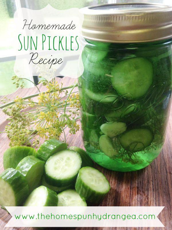 Sun Pickles Recipe
