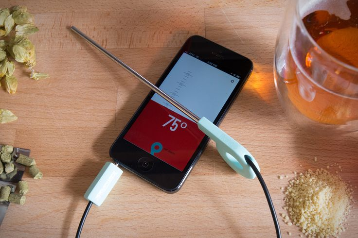 Range Smart Thermometer, plugs into your iphone and tells you the temperature of your meat while grilling or cooking... techy AND useful