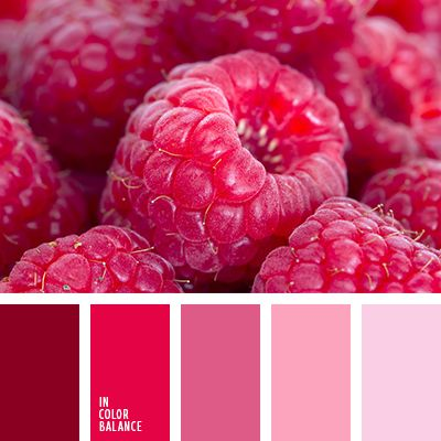 25 best pink color schemes ideas on pinterest color - What colors go with dark red ...