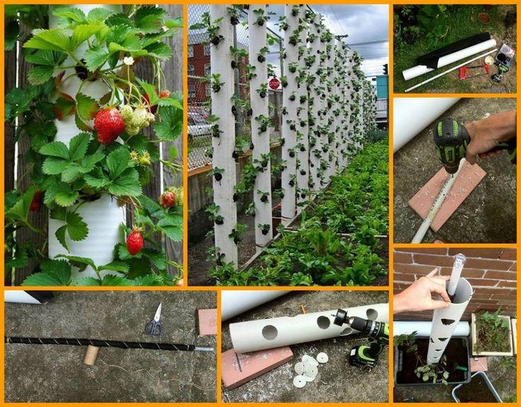 Créez une Jardinière en PVC Verticale!